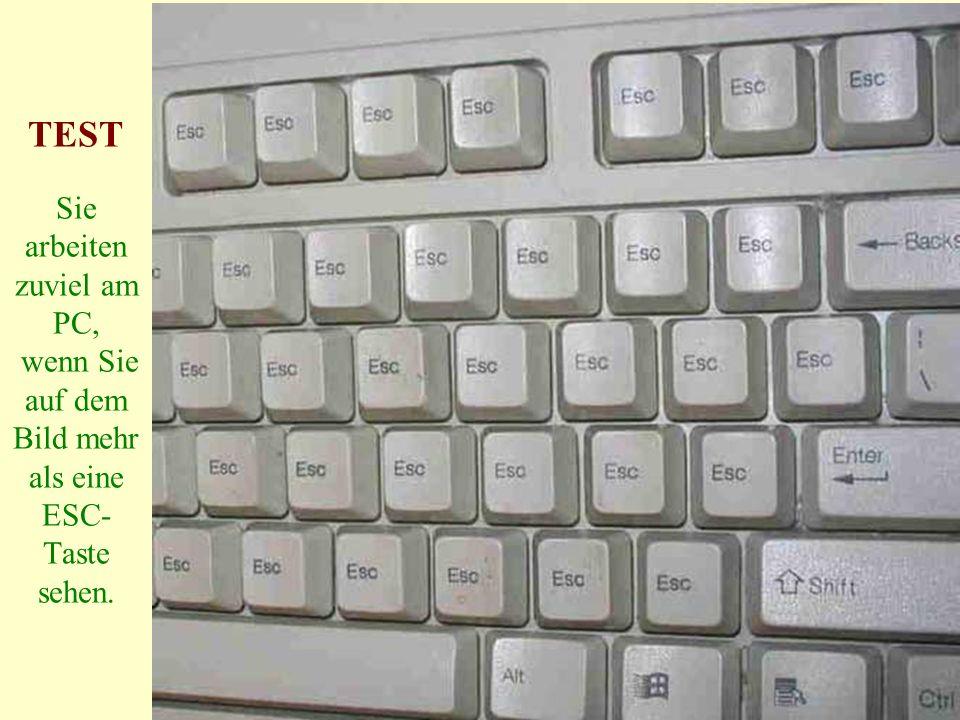 TEST Sie arbeiten zuviel am PC, wenn Sie auf dem Bild mehr als eine ESC- Taste sehen.