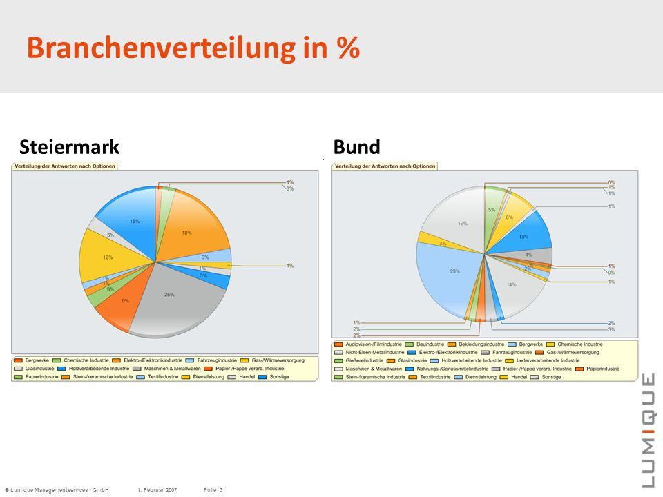 © Lumique Managementservices GmbH1. Februar 2007Folie 3 SteiermarkBund Branchenverteilung in %