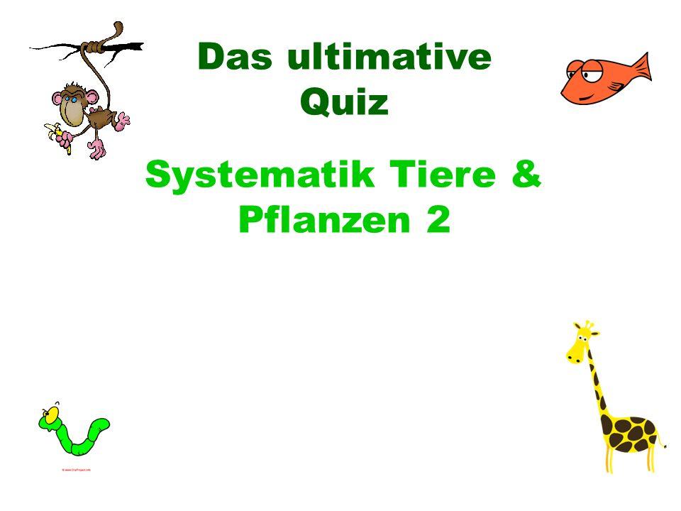 Das ultimative Quiz Systematik Tiere & Pflanzen 2