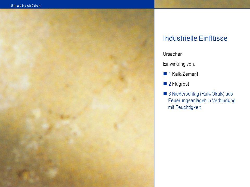Ursachen Einwirkung von: 1 Kalk/Zement 2 Flugrost 3 Niederschlag (Ruß/Ölruß) aus Feuerungsanlagen in Verbindung mit Feuchtigkeit Industrielle Einflüss