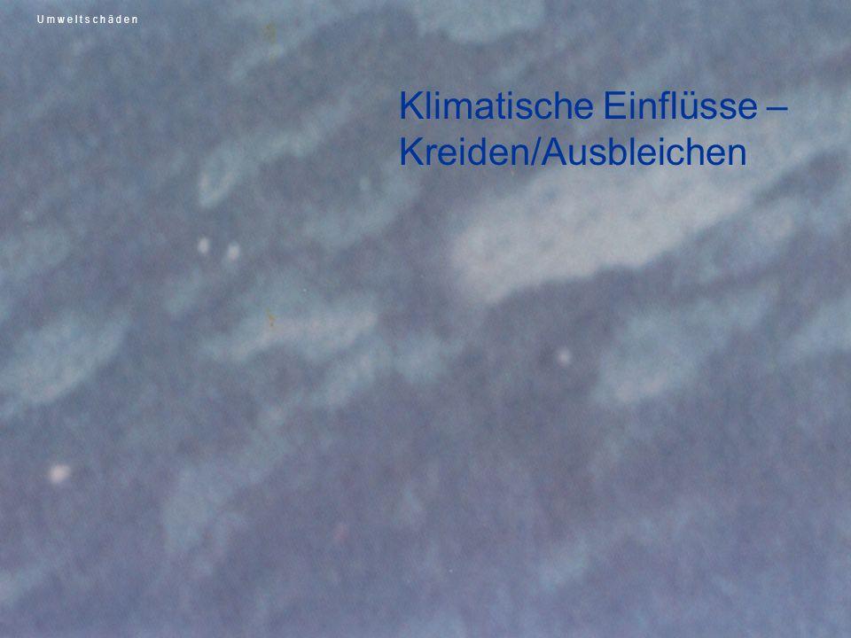 Ursachen Zu starke Umwelteinflüsse (UV-Licht), Zerstörung von Binde- mitteln und Pigment Ungenügende Lackpflege Klimatische Einflüsse – Kreiden/Ausbleichen U m w e l t s c h ä d e n