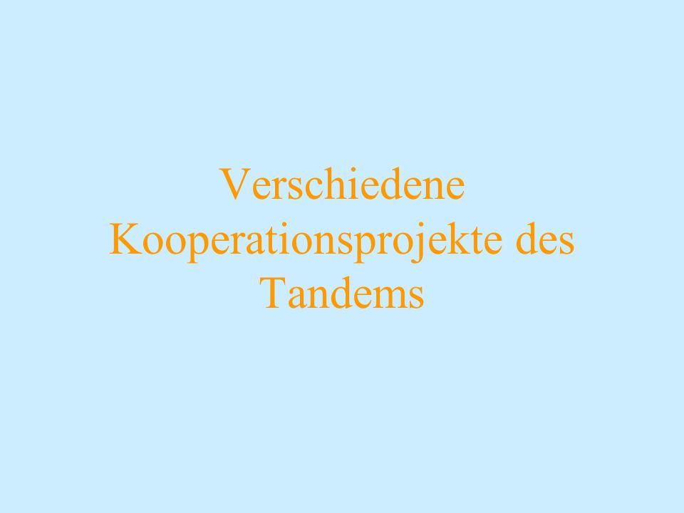Verschiedene Kooperationsprojekte des Tandems