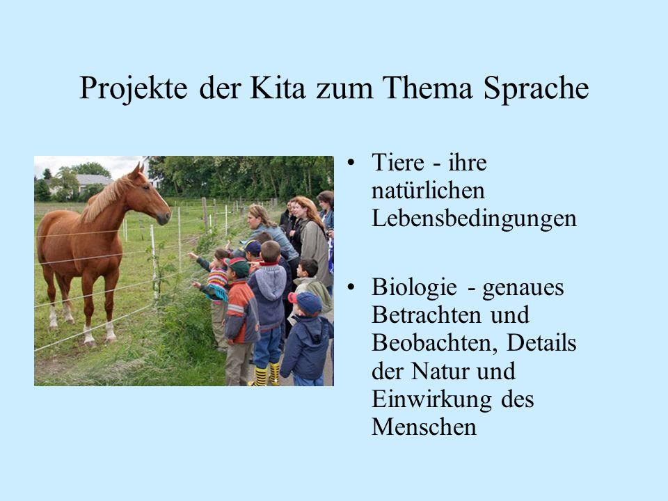 Projekte der Kita zum Thema Sprache Tiere - ihre natürlichen Lebensbedingungen Biologie - genaues Betrachten und Beobachten, Details der Natur und Ein
