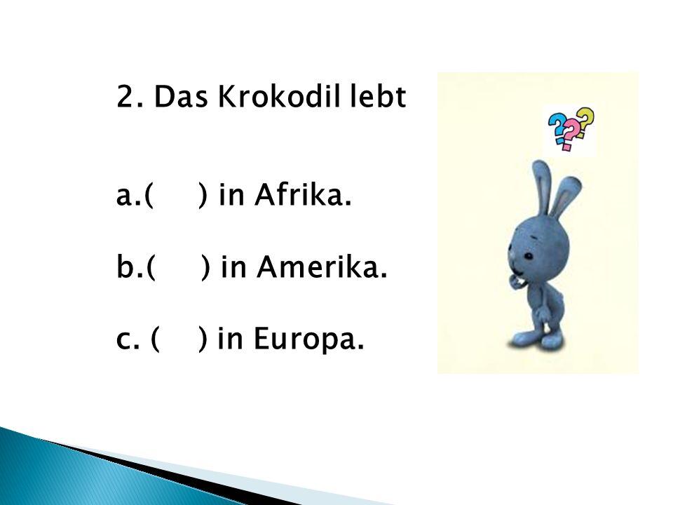 2. Das Krokodil lebt a.( ) in Afrika. b.( ) in Amerika. c. ( ) in Europa.