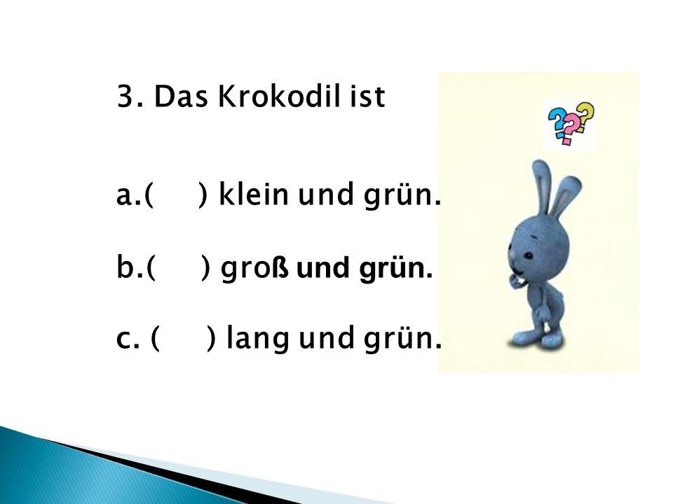 3. Das Krokodil ist a.( ) klein und grün. b.( ) gro ß und grün. c. ( ) lang und grün.