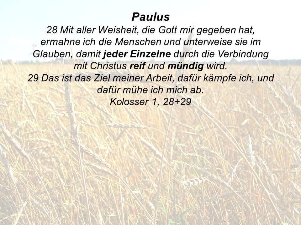 Paulus 28 Mit aller Weisheit, die Gott mir gegeben hat, ermahne ich die Menschen und unterweise sie im Glauben, damit jeder Einzelne durch die Verbind