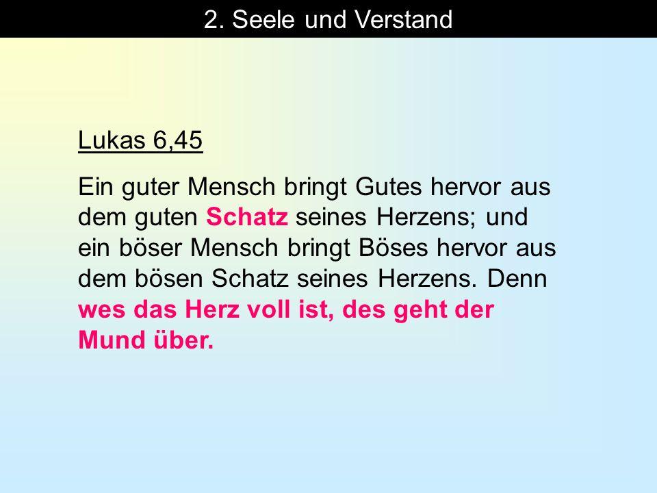 2. Seele und Verstand Lukas 6,45 Ein guter Mensch bringt Gutes hervor aus dem guten Schatz seines Herzens; und ein böser Mensch bringt Böses hervor au
