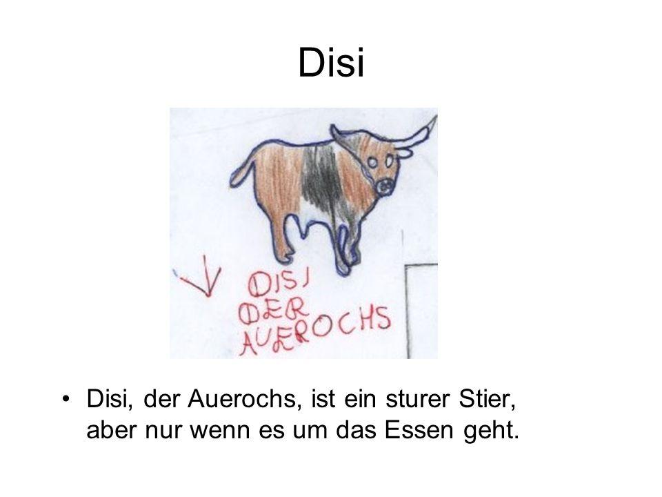 Disi Disi, der Auerochs, ist ein sturer Stier, aber nur wenn es um das Essen geht.