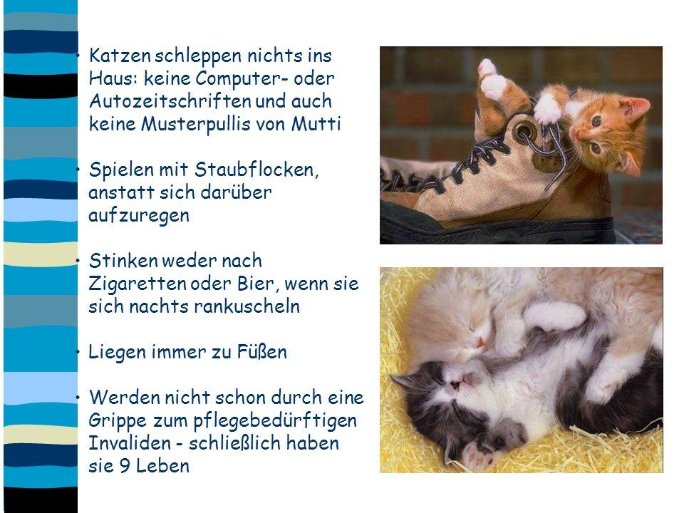 Katzen schleppen nichts ins Haus: keine Computer- oder Autozeitschriften und auch keine Musterpullis von Mutti Spielen mit Staubflocken, anstatt sich darüber aufzuregen Stinken weder nach Zigaretten oder Bier, wenn sie sich nachts rankuscheln Liegen immer zu Füßen Werden nicht schon durch eine Grippe zum pflegebedürftigen Invaliden - schließlich haben sie 9 Leben