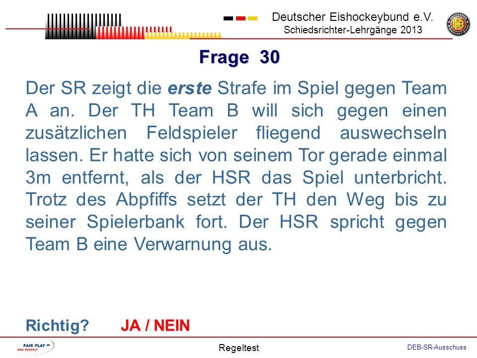 Frage 29 Deutscher Eishockeybund e.V.