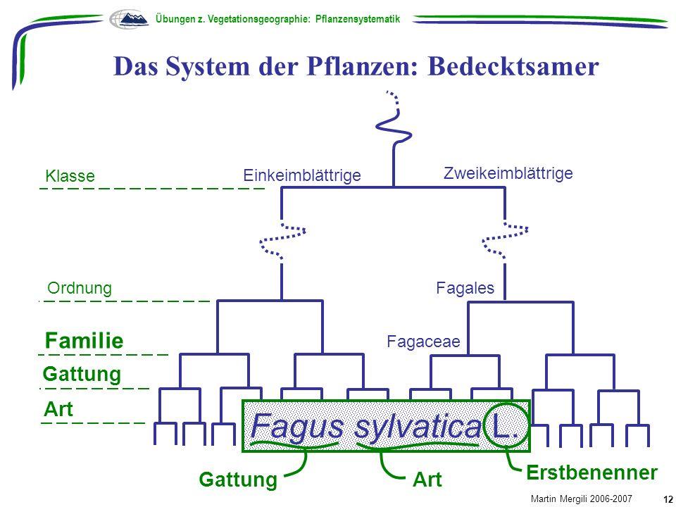 Das System der Pflanzen: Bedecktsamer Übungen z. Vegetationsgeographie: Pflanzensystematik Martin Mergili 2006-2007 12 Klasse Ordnung Familie Zweikeim