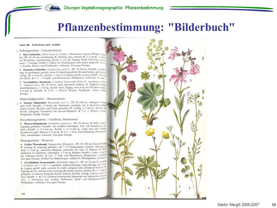 Pflanzenbestimmung:
