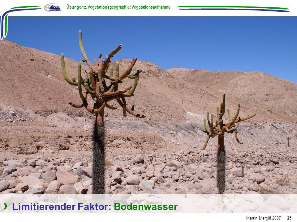 Limitierender Faktor: Bodenwasser Übungen z. Vegetationsgeographie: Vegetationsaufnahme Martin Mergili 200725