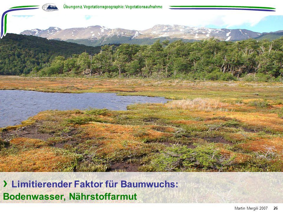 Limitierender Faktor für Baumwuchs: Bodenwasser, Nährstoffarmut Übungen z. Vegetationsgeographie: Vegetationsaufnahme Martin Mergili 200726