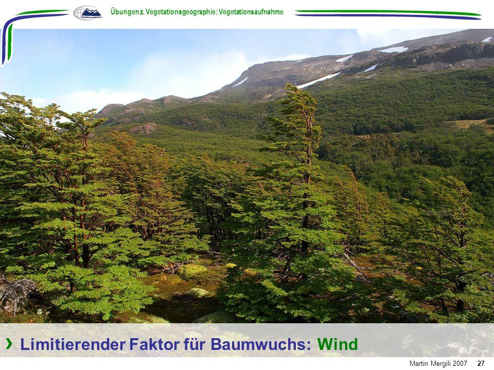 Limitierender Faktor für Baumwuchs: Wind Übungen z. Vegetationsgeographie: Vegetationsaufnahme Martin Mergili 200727
