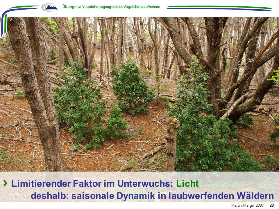 Limitierender Faktor im Unterwuchs: Licht deshalb: saisonale Dynamik in laubwerfenden Wäldern Übungen z. Vegetationsgeographie: Vegetationsaufnahme Ma