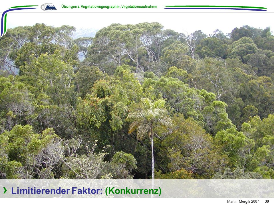 Übungen z. Vegetationsgeographie: Vegetationsaufnahme Martin Mergili 200730 Limitierender Faktor: (Konkurrenz)