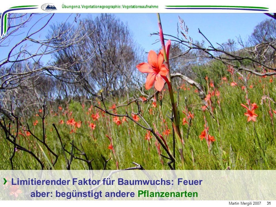 Limitierender Faktor für Baumwuchs: Feuer aber: begünstigt andere Pflanzenarten Übungen z. Vegetationsgeographie: Vegetationsaufnahme Martin Mergili 2