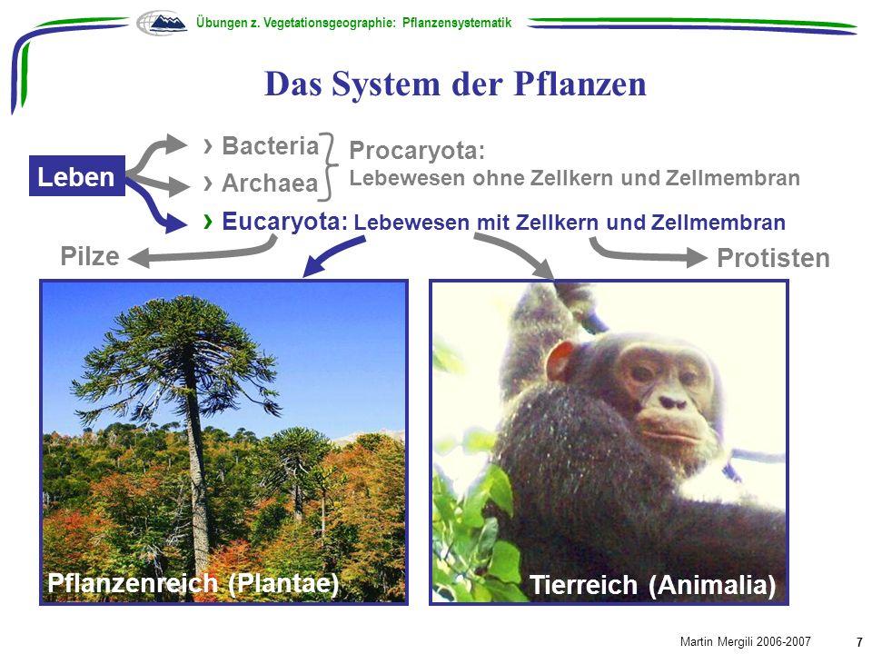 Das System der Pflanzen Übungen z. Vegetationsgeographie: Pflanzensystematik Martin Mergili 2006-2007 7 Pflanzenreich (Plantae) Tierreich (Animalia) B