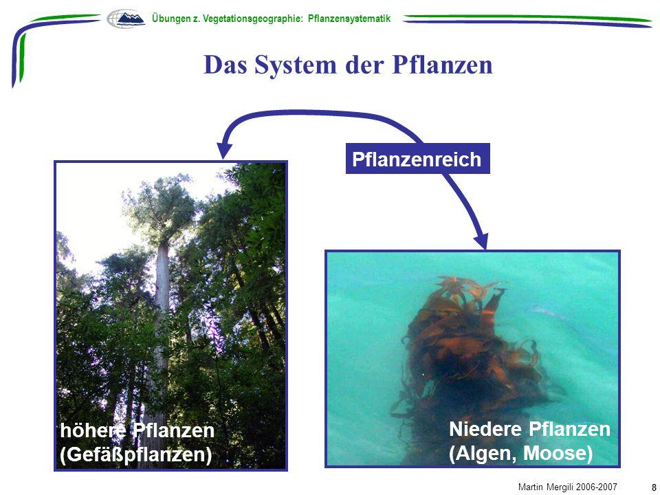 Das System der Pflanzen Übungen z. Vegetationsgeographie: Pflanzensystematik Martin Mergili 2006-2007 8 Pflanzenreich höhere Pflanzen (Gefäßpflanzen)