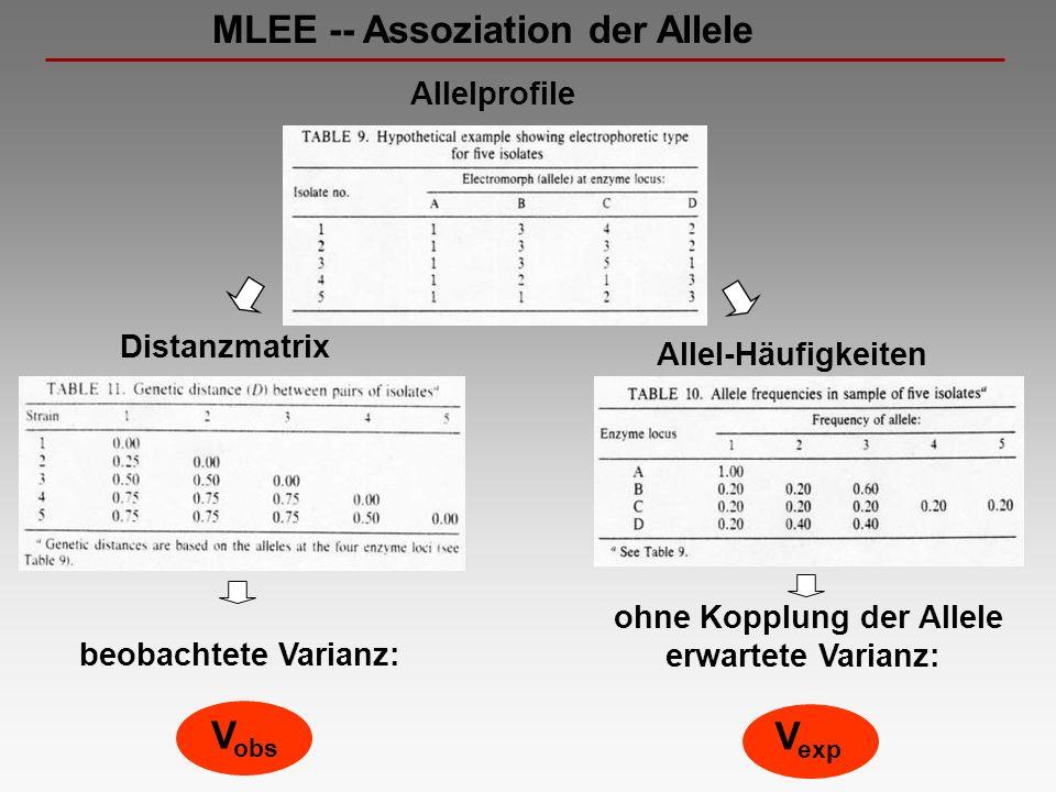 MLEE -- Assoziation der Allele Allelprofile Allel-Häufigkeiten Distanzmatrix beobachtete Varianz: V obs ohne Kopplung der Allele erwartete Varianz: V