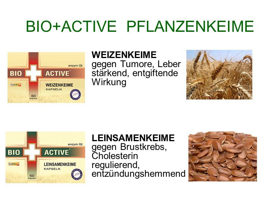 BIO+ACTIVE PFLANZENKEIME WEIZENKEIME gegen Tumore, Leber stärkend, entgiftende Wirkung LEINSAMENKEIME gegen Brustkrebs, Cholesterin regulierend, entzü