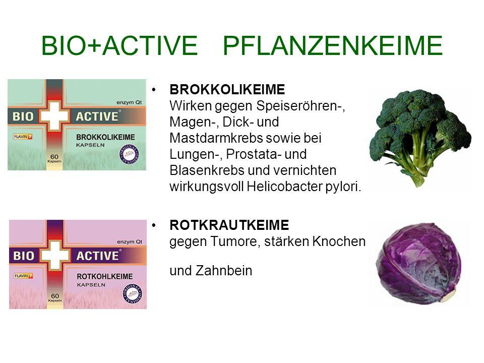 BIO+ACTIVE PFLANZENKEIME BROKKOLIKEIME Wirken gegen Speiseröhren-, Magen-, Dick- und Mastdarmkrebs sowie bei Lungen-, Prostata- und Blasenkrebs und ve