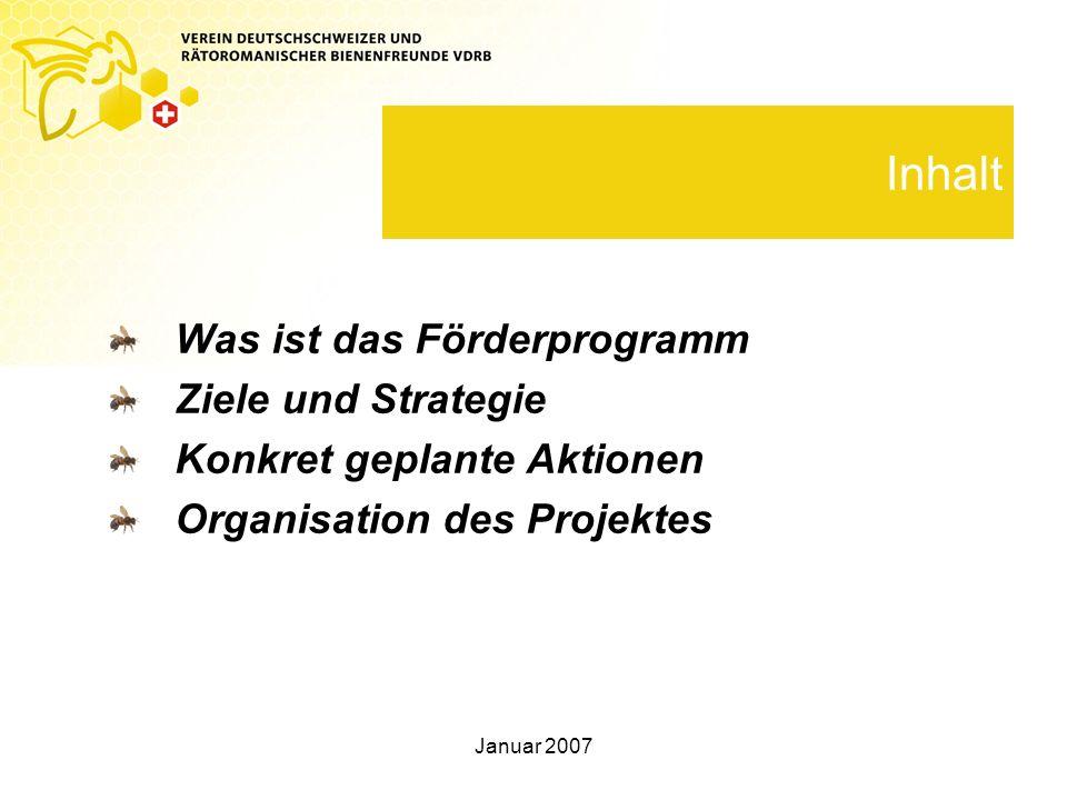 Januar 2007 Inhalt Was ist das Förderprogramm Ziele und Strategie Konkret geplante Aktionen Organisation des Projektes