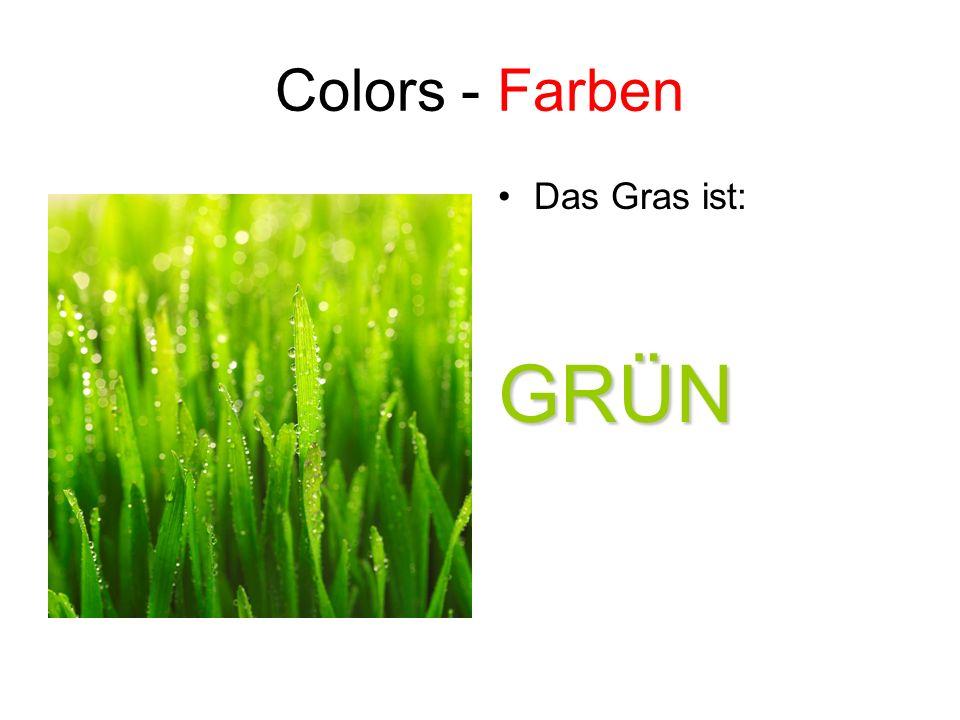Colors - Farben Das Gras ist:GRÜN