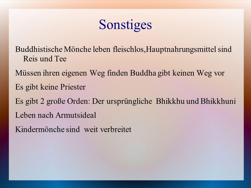 Sonstiges Buddhistische Mönche leben fleischlos,Hauptnahrungsmittel sind Reis und Tee Müssen ihren eigenen Weg finden Buddha gibt keinen Weg vor Es gi