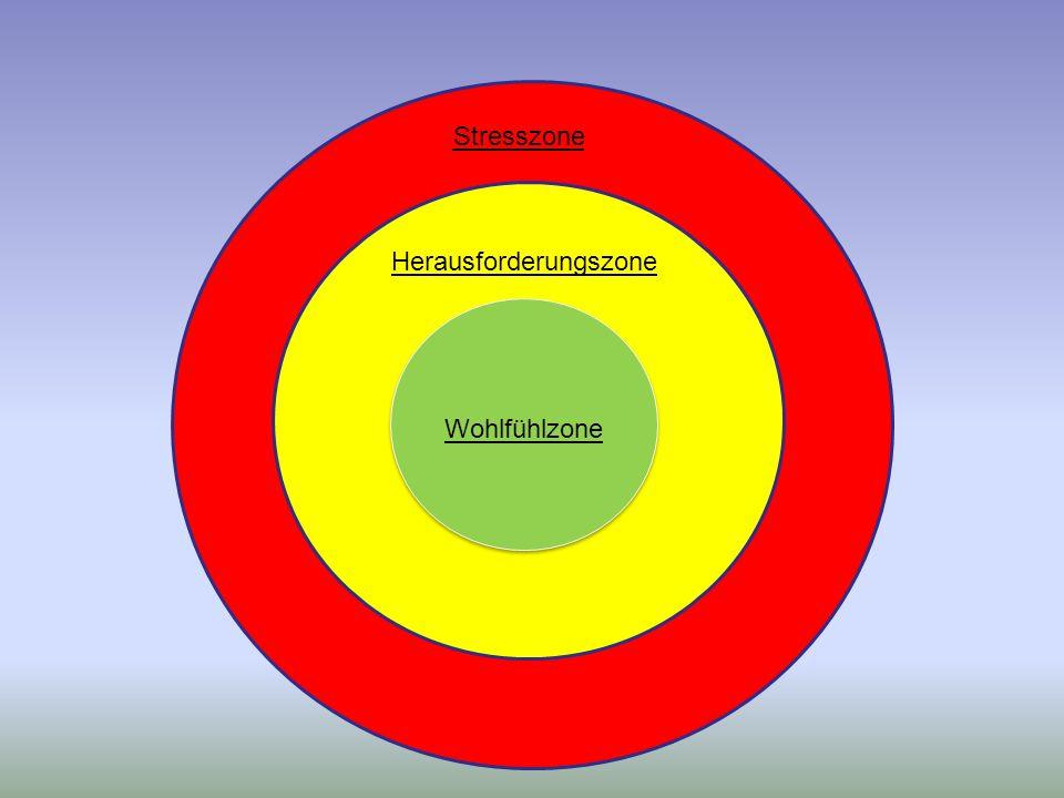 Wohlfühlzone Herausforderungszone Stresszone