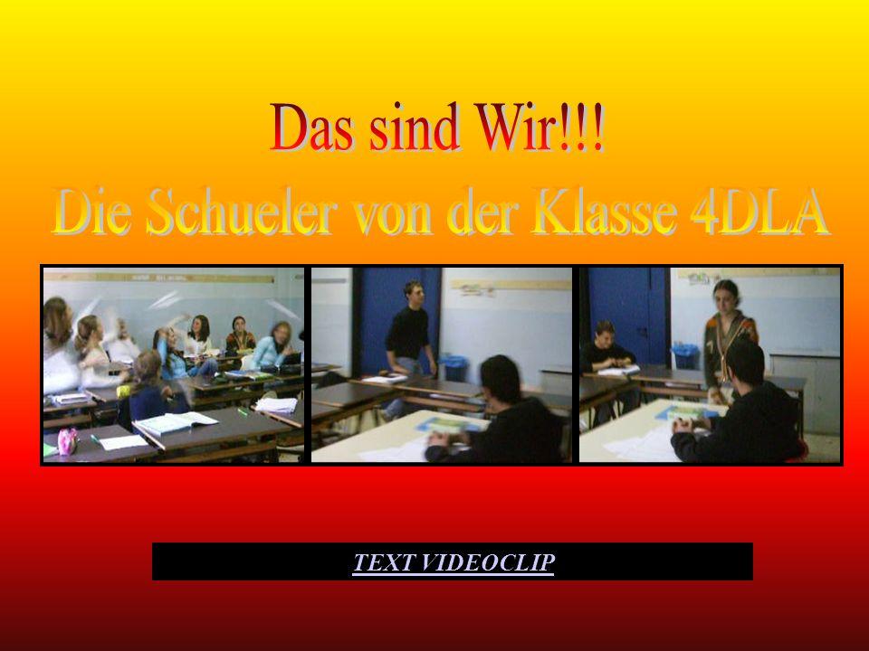 In der Klasse 4D gibt es 22 Schüler, drei Jungen und 19 Mädchen. Die meisten lernen Deutsch als zweite Fremdsprache. Was sie über sich selbst denken: