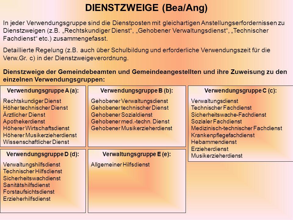DIENSTZWEIGE (Bea/Ang) In jeder Verwendungsgruppe sind die Dienstposten mit gleichartigen Anstellungserfordernissen zu Dienstzweigen (z.B.