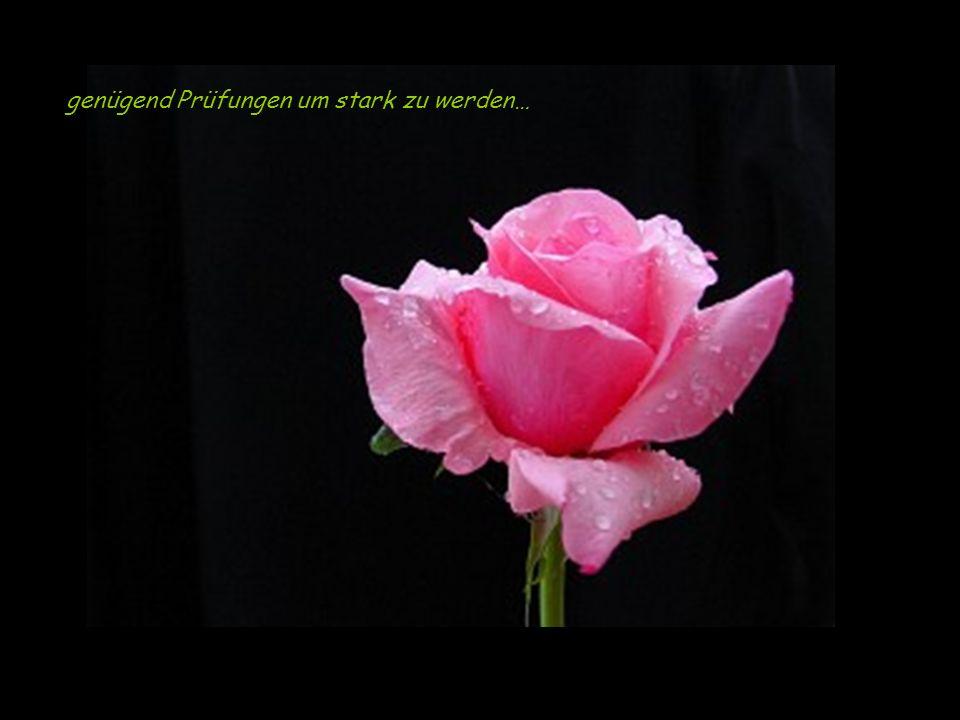 Die Liebe beginnt mit einem Lächeln, und wächst mit einem Kuss.