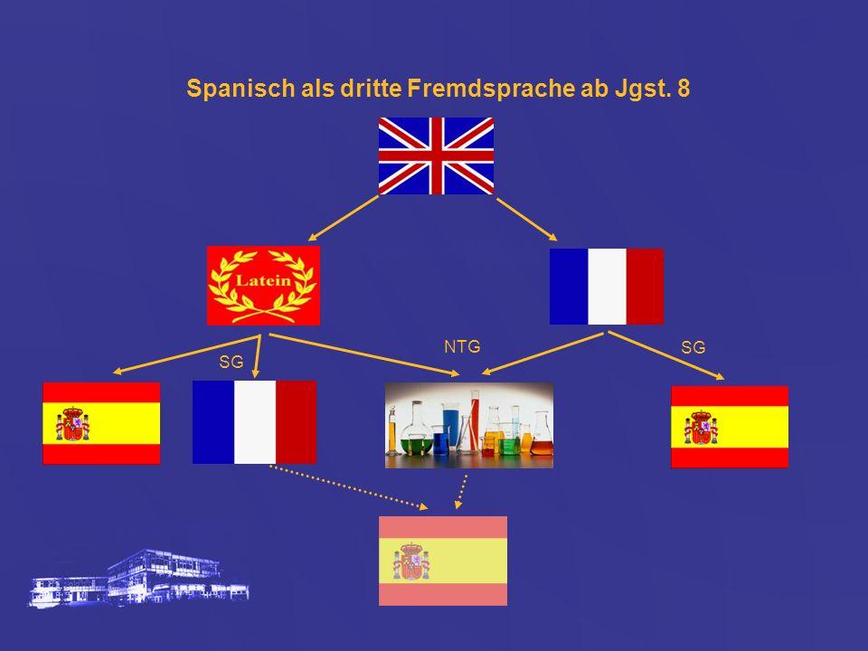 Spanisch als dritte Fremdsprache ab Jgst. 8 NTG SG