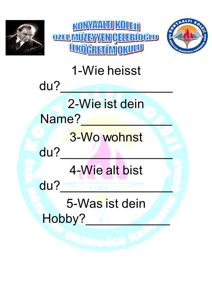 1-Wie heisst du ________________ 2-Wie ist dein Name _____________ 3-Wo wohnst du ________________ 4-Wie alt bist du ________________ 5-Was ist dein Hobby ____________