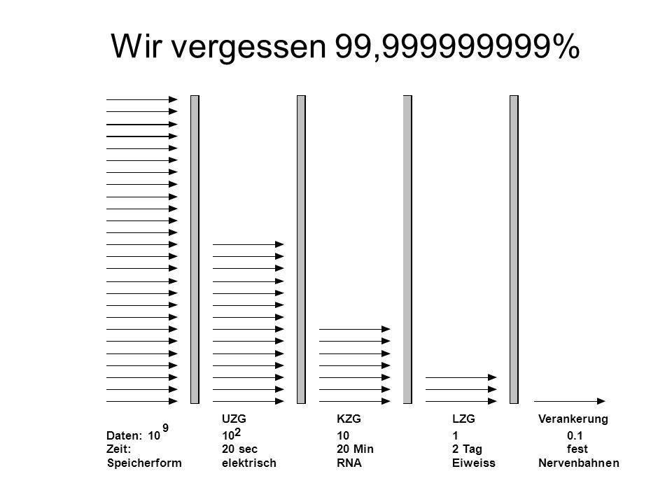 Wir vergessen 99,999999999%