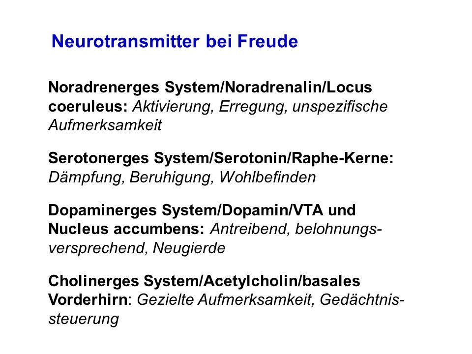 Noradrenerges System/Noradrenalin/Locus coeruleus: Aktivierung, Erregung, unspezifische Aufmerksamkeit Serotonerges System/Serotonin/Raphe-Kerne: Dämp