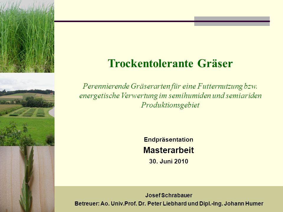 18.Mai 20091 Trockentolerante Gräser Perennierende Gräserarten für eine Futternutzung bzw.