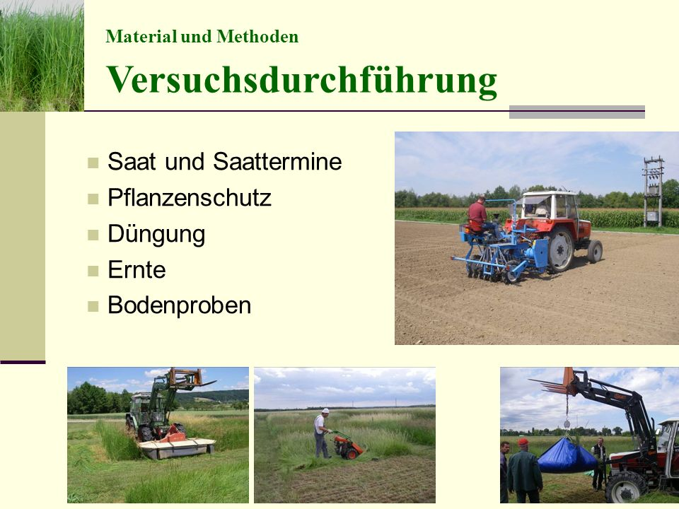 Saat und Saattermine Pflanzenschutz Düngung Ernte Bodenproben Versuchsdurchführung Material und Methoden Folie 10 Masterarbeit Schrabauer 30.