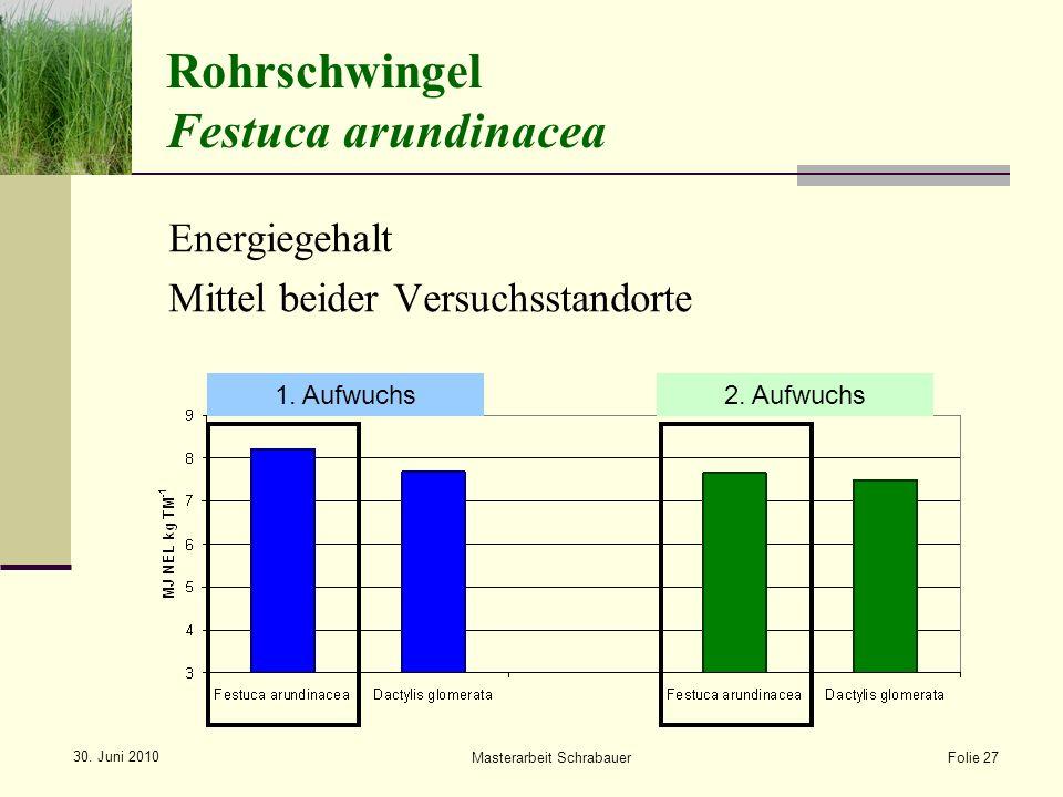 Rohrschwingel Festuca arundinacea Folie 27 1.Aufwuchs2.