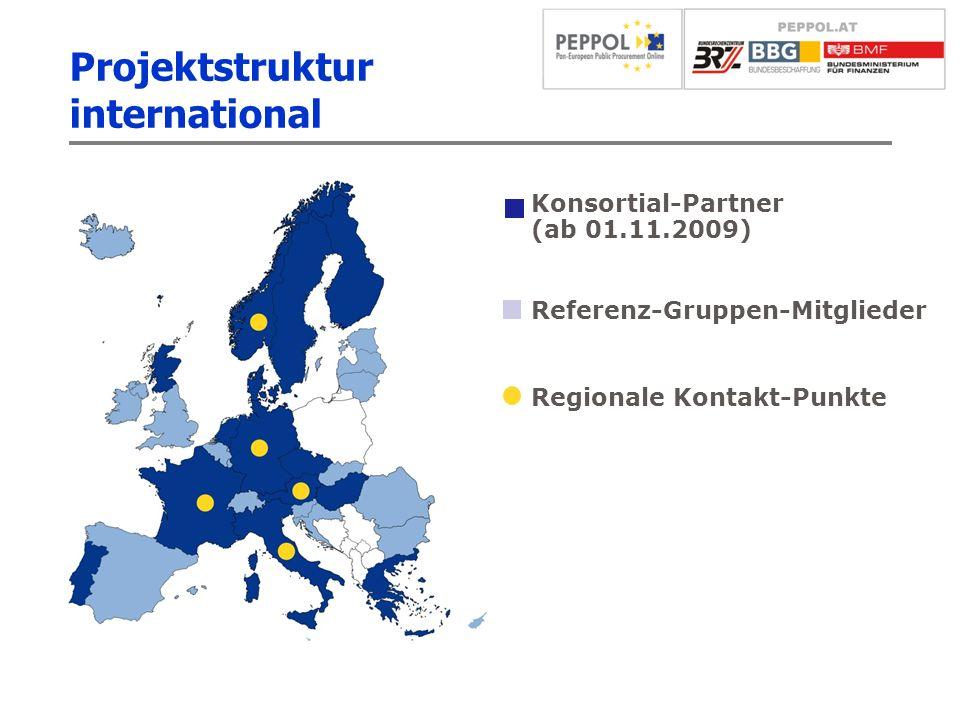 Projektstruktur international Konsortial-Partner (ab 01.11.2009) Referenz-Gruppen-Mitglieder Regionale Kontakt-Punkte
