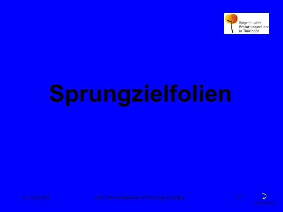 zur Übersicht 11. Juni 2013CDU-AK Innenpolitik im Thüringer Landtag17 Sprungzielfolien