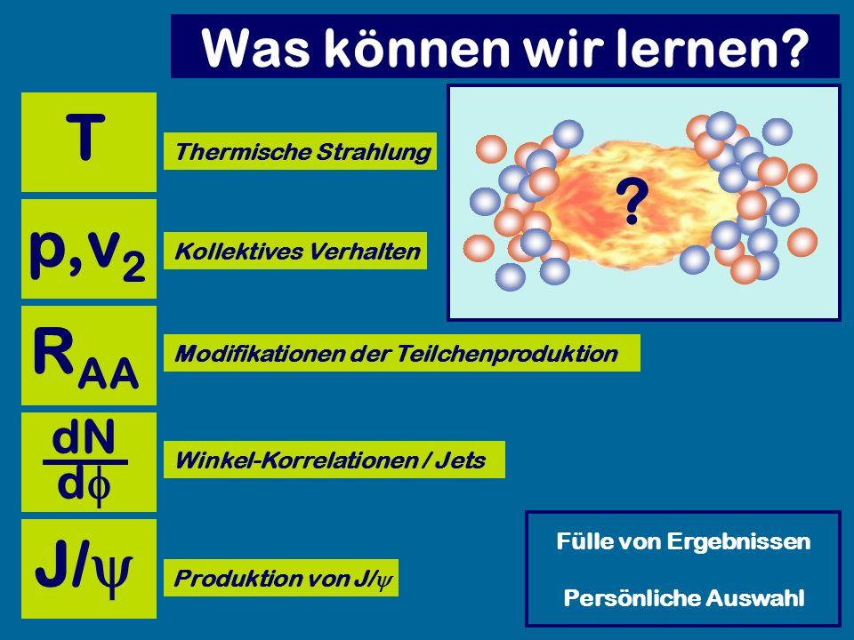 Was können wir lernen? Kollektives Verhalten Modifikationen der Teilchenproduktion Winkel-Korrelationen / Jets Produktion von J/ Thermische Strahlung
