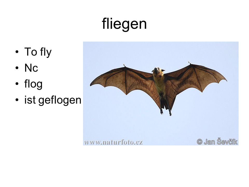 fliegen To fly Nc flog ist geflogen