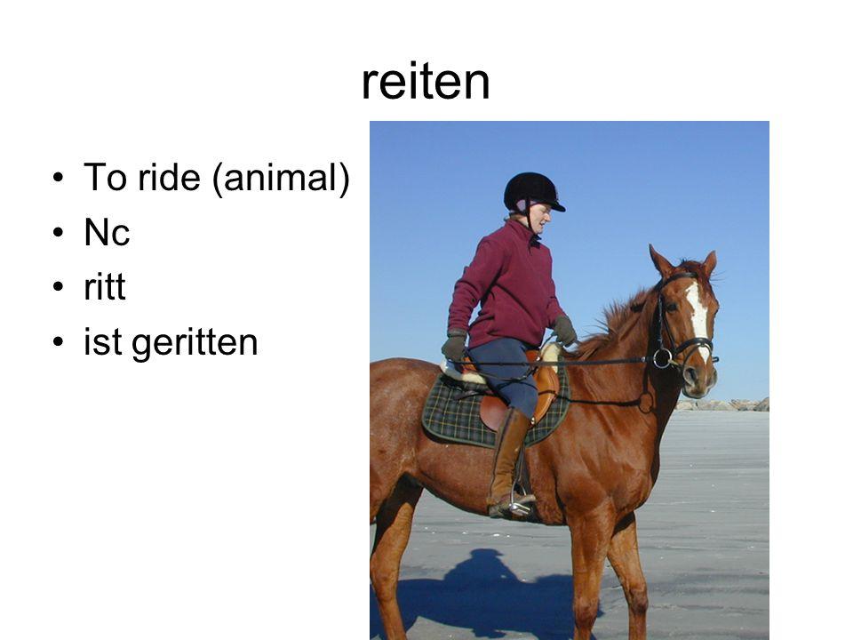 reiten To ride (animal) Nc ritt ist geritten