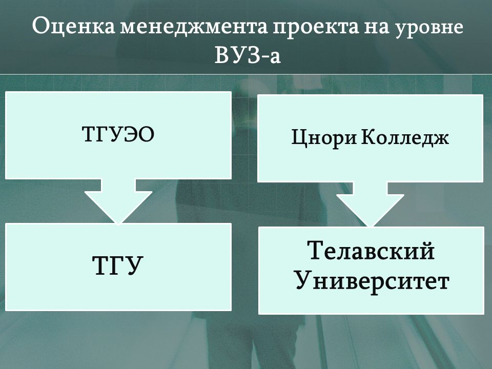 Оценка менеджмента проекта на уровне ВУЗ-а ТГУ ТГУЭО Цнори Колледж Телавский Университет