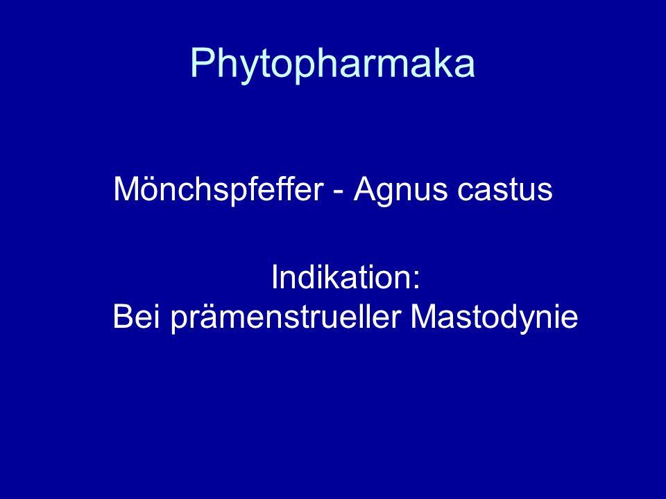 Phytopharmaka Mönchspfeffer - Agnus castus Indikation: Bei prämenstrueller Mastodynie