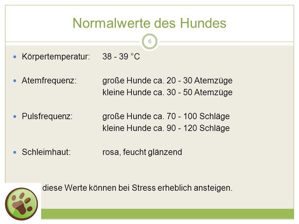 19.05.2014 Normalwerte des Hundes 6 Körpertemperatur:38 - 39 °C Atemfrequenz:große Hunde ca.