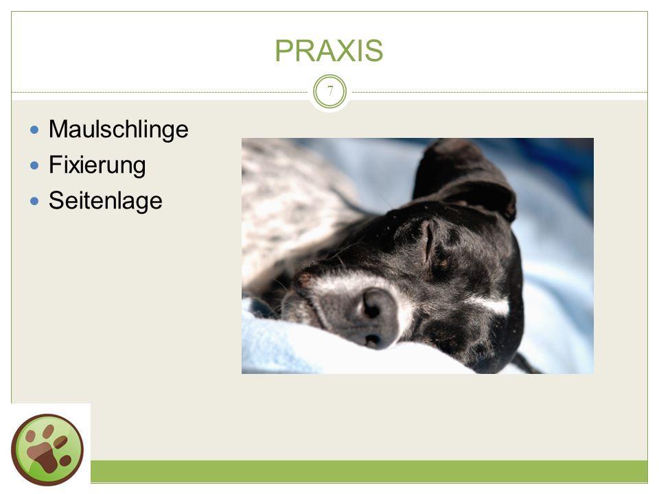19.05.2014 PRAXIS 7 Maulschlinge Fixierung Seitenlage